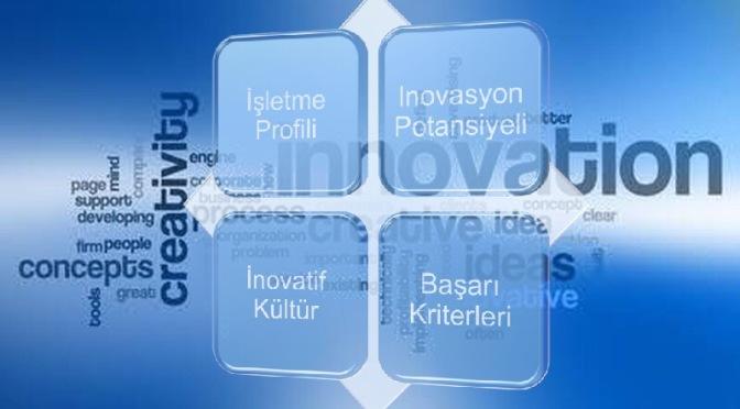 Analitik İnovasyon Endekslemesi Üzerine  Bir Deneme
