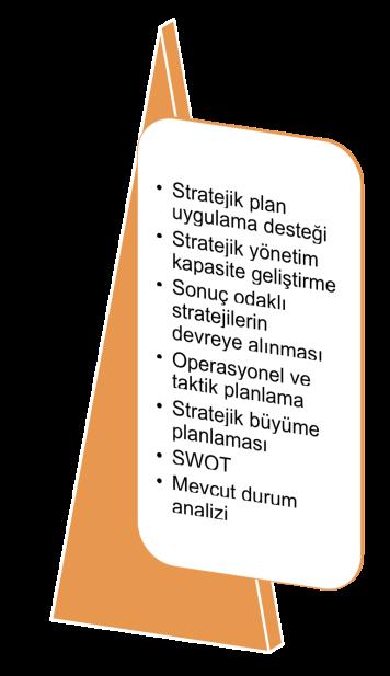 strateji-liste